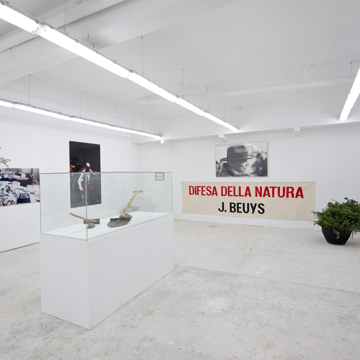 Difesa-della-Natura_J-Beuys